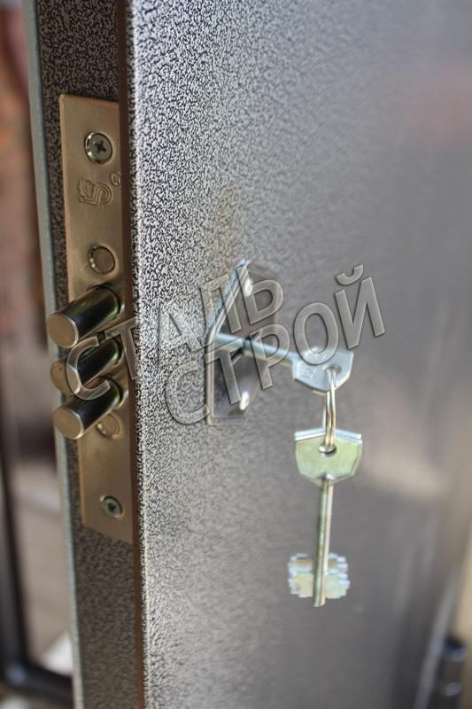 металлическая дверь для загородного дома в жуковском